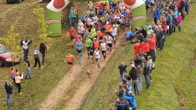 Maraton Puszczy Noteckiej, czyli... piękno biegania wśród natury