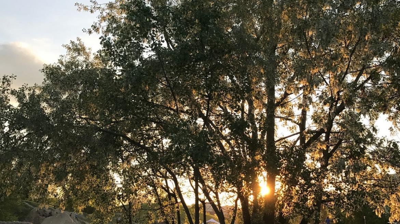 MONTE KAZURA, czyli górskie bieganie w sercu betonowej dżungli